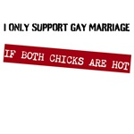 I Support Gay Marriage...