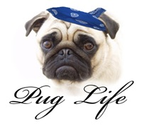 Pug Life