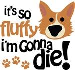 It's So Fluffy I'm Gonna Die