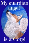My Guardian Angel Corgi