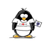 Massachusetts Penguin