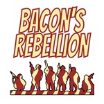 Bacon's Rebellion - History Clothing