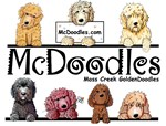 Moss Creek Goldendoodles Gear