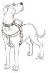 SERVICE & THERAPY DOG DESIGNS