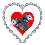 Possum Valentines Day Heart