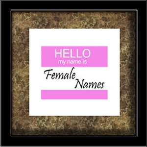 Hello My Name Is: Female Names