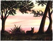 Corgi Sunset
