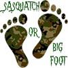SASQUATCH OR BIG FOOT