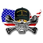 Army National Guard Skull Flag