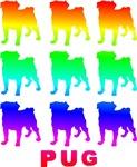 Rainbow Pugs