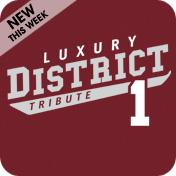 District 1 Design 3