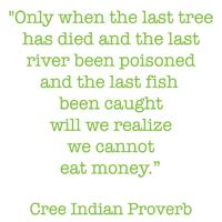 Green Wisdom & Novelty