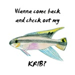 check out my krib