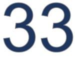 Nerd 33