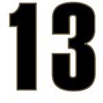 Sarcastic 13