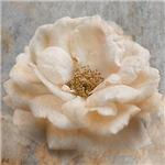 Vintage Rose I