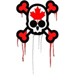 Canadian Punk Skull