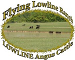 FLYING LOWLINE RANCH