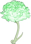 Green Carnation T-shirts & Gifts