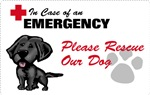Save My Black Lab