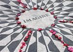 Imagine:Roses