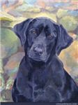 Sweet Black Labs