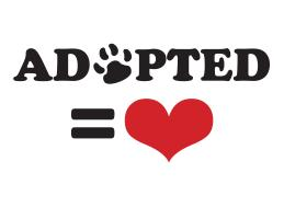 Adopted = Love