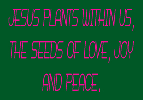RELIGION/JESUS PLANTS WITHIN US THE SEEDS OF LOVE