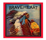 BEAUTIFUL NATIVE AMERICAN SAYINGS.. SECTION