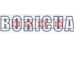 Chicago Flag Over Boricua