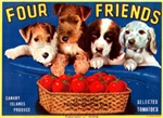 Four Friends Tomtatoes