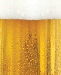Beer and Foam Design
