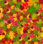 Artistic autumn leaves For thanksgiving