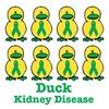 Kidney Disease Awareness Ribbon Ducks