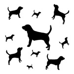 Many Beagles - t-shirts and gifts