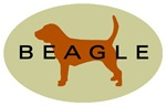 Beagle Dog Sage 