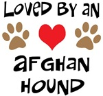 Loved By An Afghan Hound