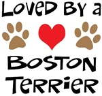 Loved By A Boston Terrier