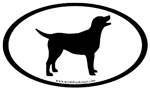 labrador retriever oval