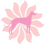 Pink Flower Greyhound