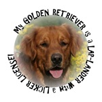 LAP LANDER ~ GOLDEN RETRIEVER (B)
