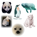 Pandas, Penguins, Polar Bears, Moose, Wildlife