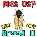 Miss Us Cicada