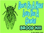 Don't be a Hata Love You A Cicada