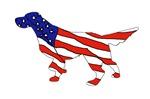 Patriotic Setter