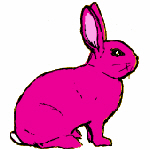 Pink Rabbit T-Shirts & Gifts