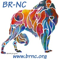 BR-NC BORZOI RESCUE GROUP