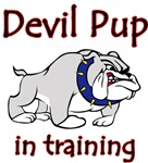 Yvonne's Devil Pup in training