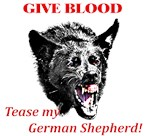 shepherd tease