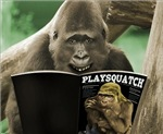 Funny Bigfoot & LOL Sasquatch